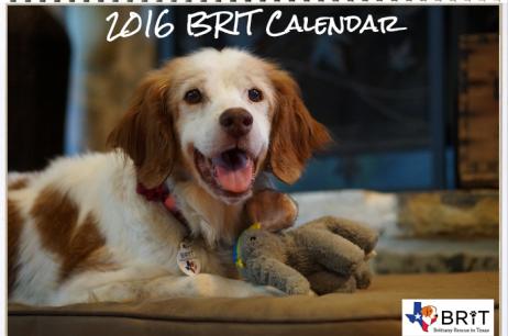 2016 BRIT Calendar