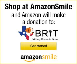 Smile.Amazon