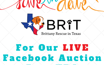 Fall Facebook Online Auction