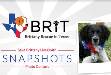 BRIT's 2018 Calendar Photo Contest