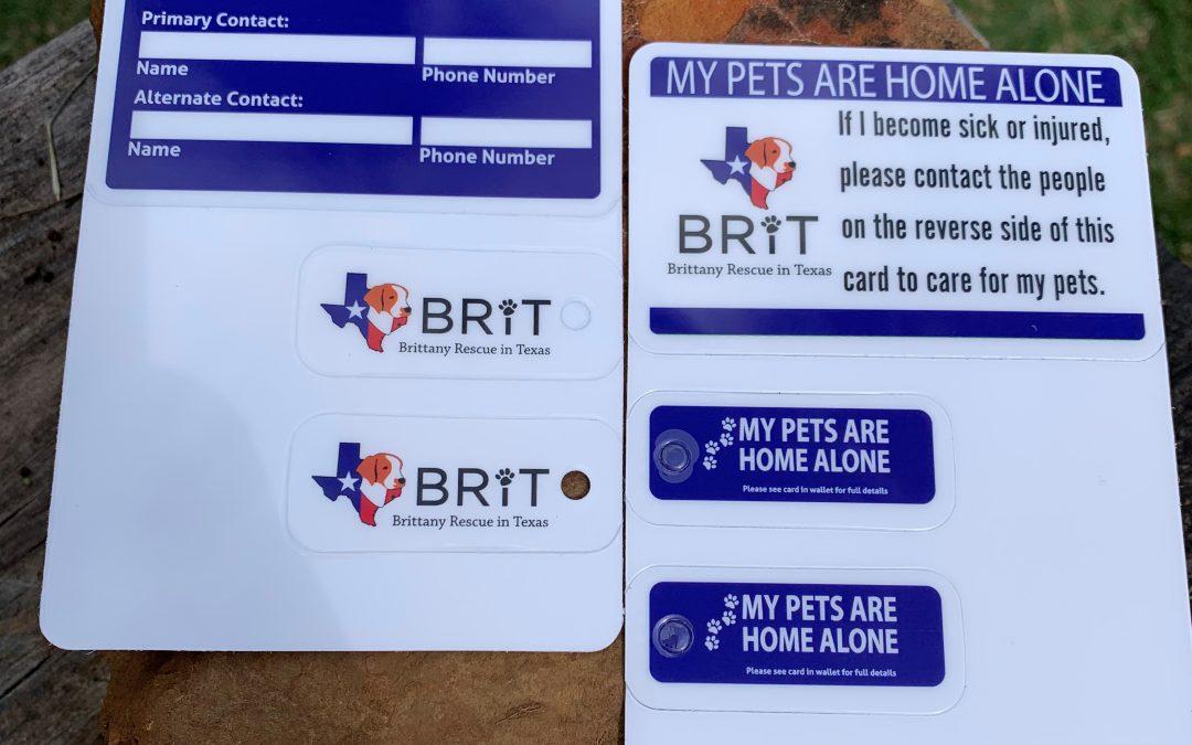 BRIT Merchandise – Home Alone Cards