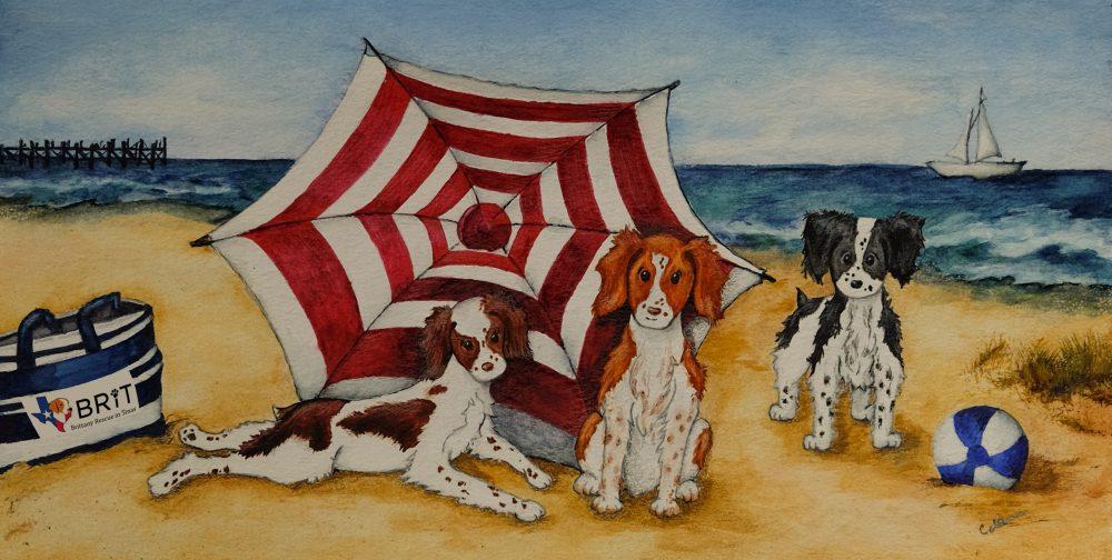 BRIT_Beach_Towel