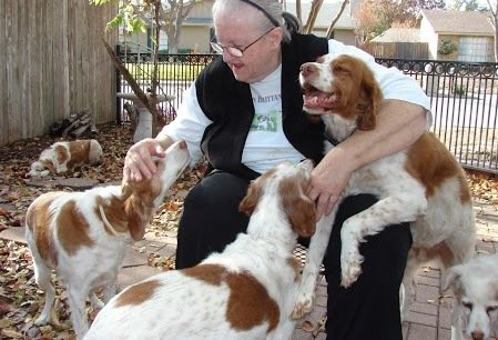Senior and Special Needs Foster Program