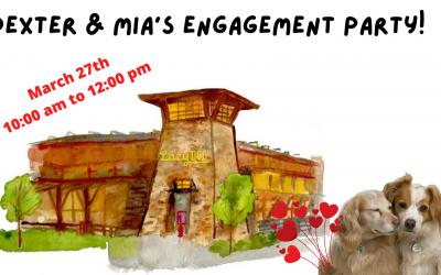 Dexter & Mia's Engagement Brunch