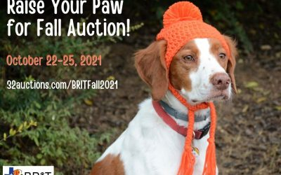 BRIT Fall Auction – Oct. 22 to 25