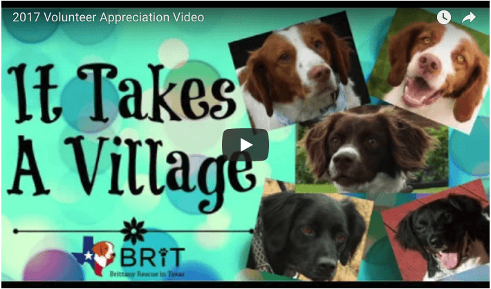 2017 BRIT Volunteer Appreciation Video