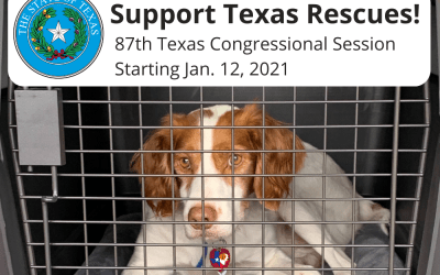 Texas Rescues need YOUR help!! (Shelter & Rescue Ownership Rights)