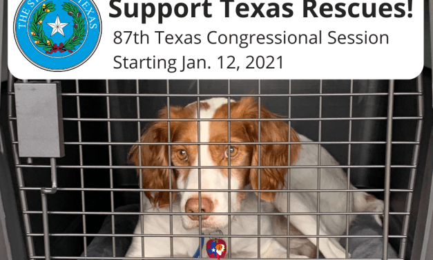 Texas Rescues need YOUR help!!