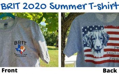2020 BRIT Summer T-shirt