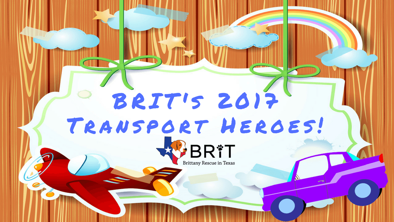 BRIT's 2017 Transport Super Heroes