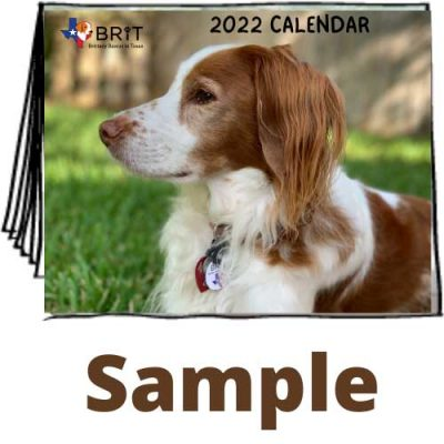 BRIT calendar front cover