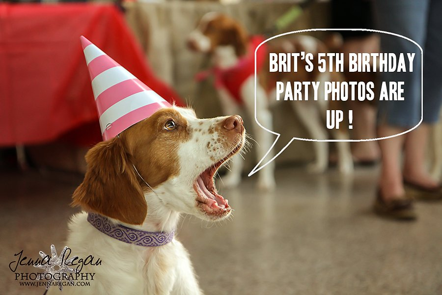 BRIT's 5th Birthday Party Photos are up!